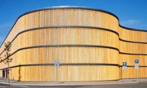 Bambu: A Madeira do Futuro